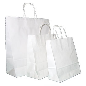 White Paper Twist Handle Bags
